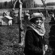 © Uģis Niedre. Bee-garden or Portrait in the garden. 1970-ies – 1980-ies
