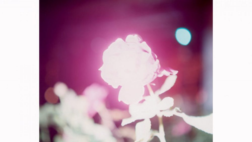 "Rinko Kawauchi. From the series ""Illuminance"", 2009"