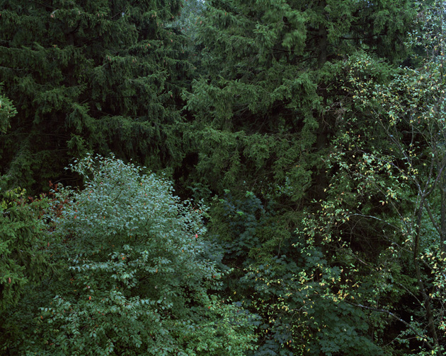 """Indre Šerpytytė. I. From the series """"Forest Brothers"""", 2009"""